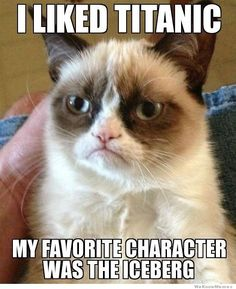 Yes, grumpy cat, yes.