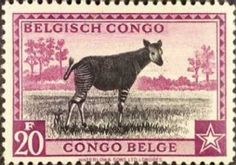 bcong225.jpg (381×267) news, okapia, stamps, fossils