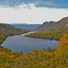 The colours of the fagus just about to turn at Lake Hanson in the Cradle Mountain National Park. #tasmania #cradlemountain #discovertasmania Image credit: Kelvin Burrage