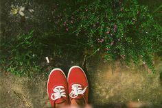 ked shoe, red ked