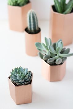 DIY // Metallic Geometric Planters in 5 Minutes