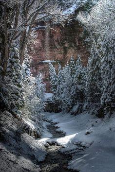 Secret Snow