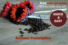 DIY:  Quick and Easy Fall Centerpiece with Sunflowers and Coffee Beans - www.turnstylevogue.com