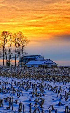 Winter Sunset Over Barn