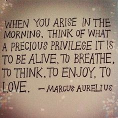 When you arise in the morning, think of what a precious privilege it is to be alive, to breathe, to think, to enjoy, to love.