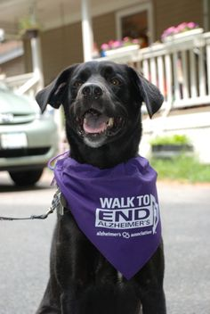 Walk to End Alzheimer's alz.org/walk