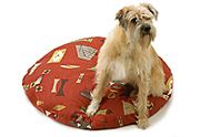Elasticized Dog Bed Cover