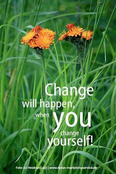 """... musste mal wieder """"gesagt"""" werden: #Change ... Wenn sich jeder nur ein bisschen ändert und die Umwelt respektiert, achtsam mit Ressourcen umgeht, bio, saisonal und regional einkauft ist schon viel gewonnen. *** Mein Foto zeigt übrigens das """"Orangerote Habichtskraut"""", quasi die einzige heimische Wildblume, die Orange blüht. Mehr dazu: http://wildeschoenheiten.wordpress.com/2011/05/22/bluten-in-orange-eine-raritat-bei-heimischen-wildblumen/"""