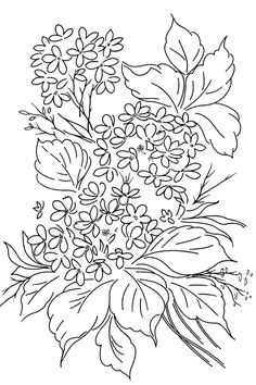 Flowers draw, embroidery patterns, embroideri pattern, color, fun stuff, art, flower bush, printabl