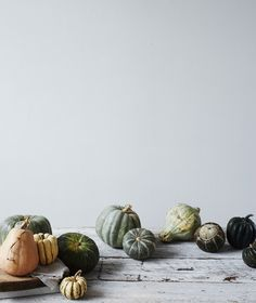 gourd, pumpkin decorations, company picnic, food styling, fall treats, autumn harvest, fall photos, fall foods, winter foods