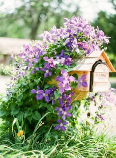 Lovely mailbox | Photography: Yazy Jo - yazyjo.com  Read More: http://www.stylemepretty.com/living/2014/09/22/la-la-lovely-home-tour/