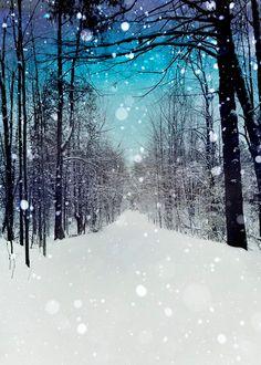 Winter, Snow Photography
