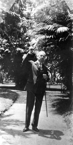 Frank Lloyd Wright in 1938. The Frank Lloyd Wright Foundation Archives (The Museum of Modern Art   Avery Architectural & Fine Arts Library, Columbia University, New York).