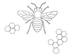 Bee Embroidery Pattern - - inspiration - medical diagrams of bugs, embroidered