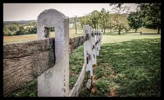 Today's POTD is a fence line on the grounds of the plantation   -   Fence Line by Kelly_A, via Flickr