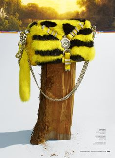 Versace fur bag By Kyle Anderson, September Marie Claire