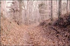 the national, genealogyheritag irishcheroke, cheroke heritag, nativ american, nation park