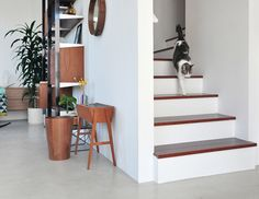 Contemporary mid century modern furniture on pinterest 211 pins for Interieur moderne