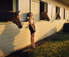 stables!