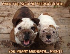 You meant mudbath, right?