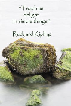 """""""Teach us delight in simple things.""""  -- Rudyard Kipling --  The Naturalist Intelligence as identified by Harvard educator, Howard Gardner, is pivotal to children's environmental learning.  Learn more at """"Creative learning – how to build a child's naturalist intelligence"""" at http://www.examiner.com/article/creative-learning-how-to-build-a-child-s-naturalist-intelligence"""