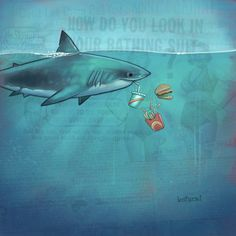 "Shark Meal...""Always wait 30 minutes to swim after eating."" #notarule"