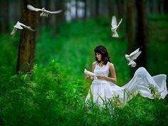 Doves white dove, life, goddesses, seed, peace, beauti, flowers, quot, natural beauty