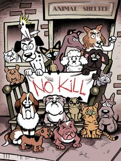 """No Kill"" cat & dog poster"