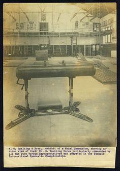 interest histori, gymnast championship, intern gymnast, 1904 olymp