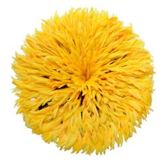 Maria Barros Home - Juju Hat Amarelo