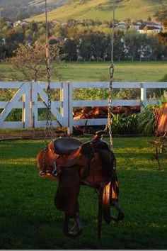 saddle swing. I would love this for my grand kids!