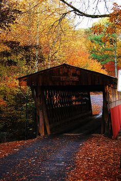 Easley Covered Bridge, Blount County, AL  Photo by Susan Johnson