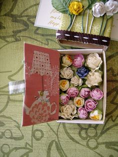 rose garden in matchbox