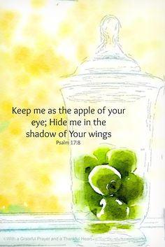 Psalm 17:8
