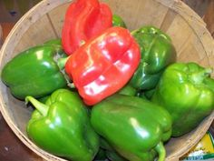 Learn How to Grow Bell, Sweet, and Hot Peppers - Instructions and advice for growing Pepper Plants in Your Vegetable Garden