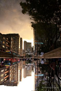 Reflected Glory - Bogota, Colombia