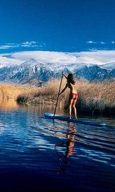 .. paddle ..