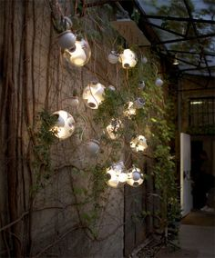 this would be awesome lighting in the garden