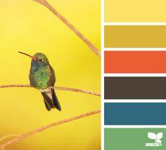 colour, yellow rooms, color palettes, orang, design seeds, kitchen colors, color pallettes, hummingbird hue, kitchen color schemes