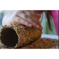 Roll a toilet paper roll in peanut butter then roll in birdseed. Homemade bird feeder.