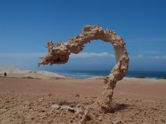 A fulgarite occurs when sand is struck by lightning.  The lightning melts the sand along the fingers of electricity and then wind blows the sand, creating incredible natural sculptures.  (Photo by Ken Smith from Australia for National Geographic)