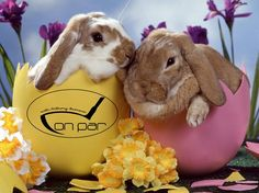 Happy Easter from the On Par radio show.