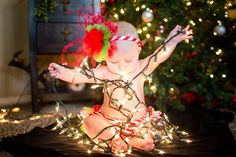baby's first christmas | indiejane photography