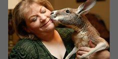 Christie Carr hugs her kangaroo. Wouldnt that be nice?
