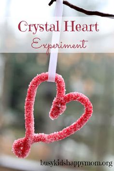 Crystal Heart Science Experiment - Busy Kids=Happy Mom