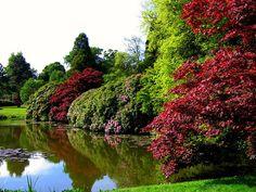 Sheffield Park, a National Trust Garden in East Sussex, UK via Flickr