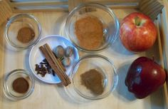 Spice Tray for 5 Senses Experiment from Edventures with Kids