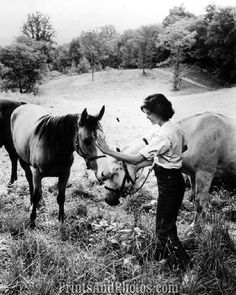 Jackie kennedy horses more