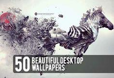 50 Beautiful Desktop Wallpapers