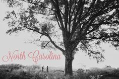 First Local Wedding Guide :) North Carolina!